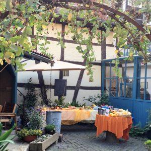 Faires Frühstück im Landsberg-Garten in Hofheim